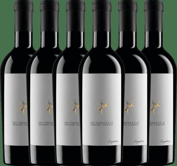 6er Vorteils-Weinpaket - Settebraccia Rosso 2016 - Cantina Sampietrana