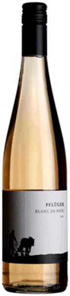 Blanc de Noir trocken 2020 - Weingut Pflüger